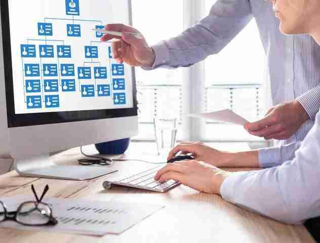 Organisation Structure Design & Development